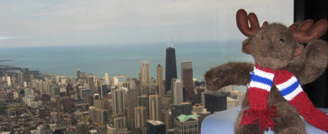 Brad posing in front of the Chicago skyline