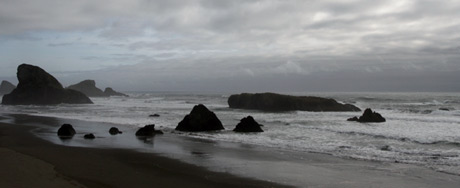 Along the Oregon Coast